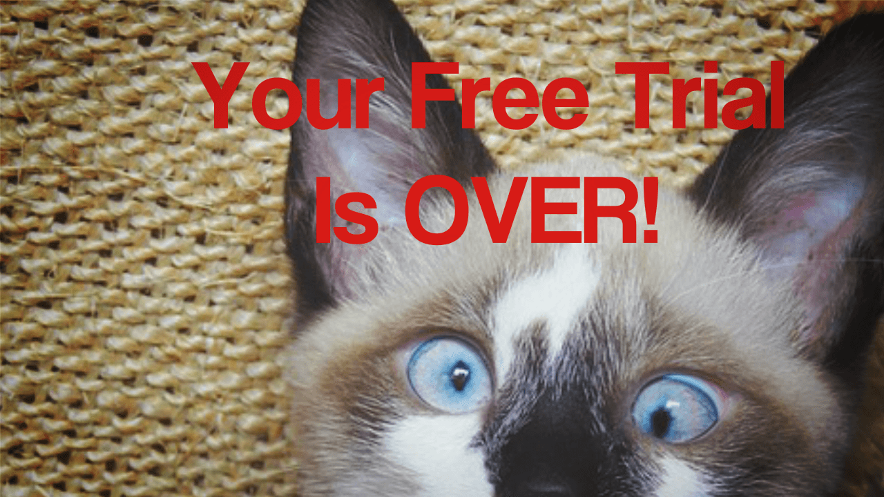 Your Free Trial Is Over